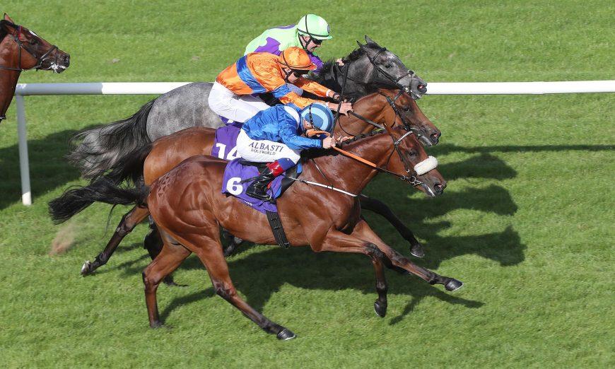 Dutching horse racing