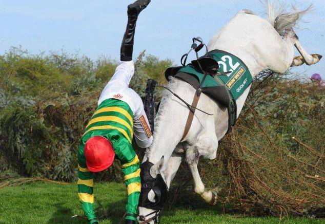 Horse racing faller